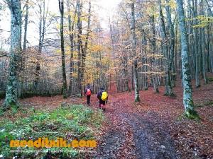 29-Urbasa_Andia_Zeharkaldia_Travesia_Montana_Mendia_Euskal_Herria_Pais_Vasco_Pays_Basque_Basque_Country_Menditxik_Mendi_Arroila_Gidariak_Guías_montaña_barrancos_mountain_canyon_guide_montagne_canyon_guides