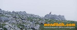 30-Urbasa_Andia_Zeharkaldia_Travesia_Montana_Mendia_Euskal_Herria_Pais_Vasco_Pays_Basque_Basque_Country_Menditxik_Mendi_Arroila_Gidariak_Guías_montaña_barrancos_mountain_canyon_guide_montagne_canyon_guides