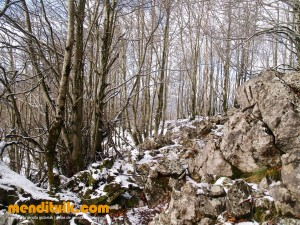 Cueva del Kura santa Cruz | Santa kurtz apaizaren koba