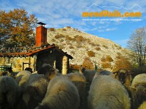 1 Degurixa Artzai Txabola Degurixa Aizkorri Aratz Queso GAzta Chabola Pastor menditxik mendi gidariak guías de montaña mountain guides canyon canyoning barrancos arroilak